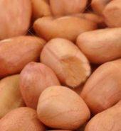 Samurnabazaar Raw Peanut Loose 1 Kg