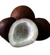 Samurnabazaar Dry Khopra 250 Gm