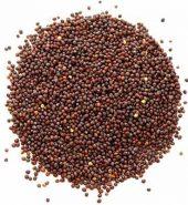 Samurnabazaar Mustard Small 500 Gm