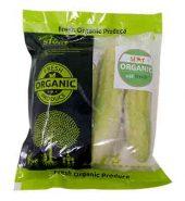 Eat Fresh Organic Cucumber 500 Gm